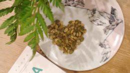 6 полезных семян и семечек